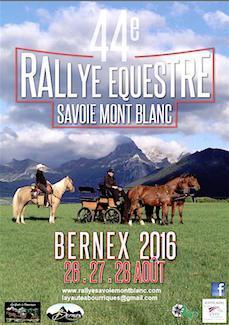 rallye equestre
