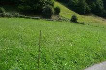 Vente terrain - CAUTERETS (65110) - 1080.0 m²