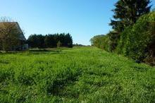 Vente terrain - LOUCHY MONTFAND (03500) - 2000.0 m²