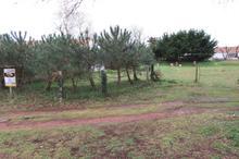 Vente terrain - ST JEAN DE MONTS (85160) - 1100.0 m²