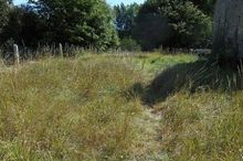 Vente terrain - Orne (61) - 1130.0 m²