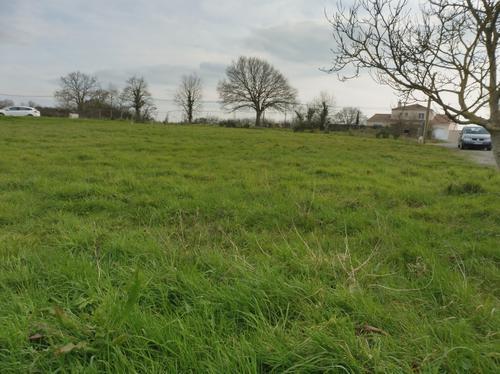 Terrain à vendre sur Ligné par l'agence immobilière Century 21 CAI de Carquefou