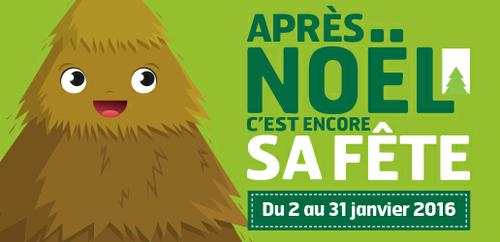 collecte sapins noisy le grand