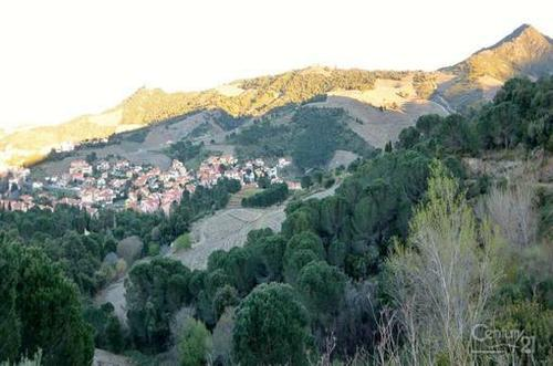 vente terrain à Collioure
