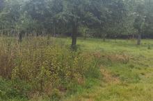 Vente terrain - BERNAY (27300) - 1414.0 m²