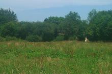 Vente terrain - LANVALLAY (22100) - 1686.0 m²