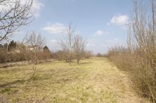 Vente terrain - CASTRES (81100) - 1295.0 m²