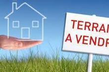 Vente terrain - HOUILLES (78800) - 300.0 m²