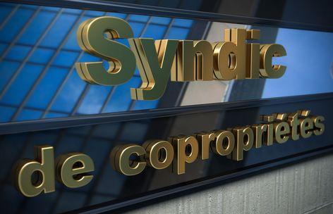 Les Syndics : droits et devoirs.