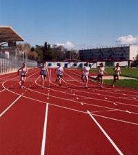 halle-sport